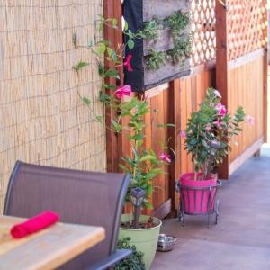 Garden Kitchen San DiegoFresh Food Sustainable Cooking From