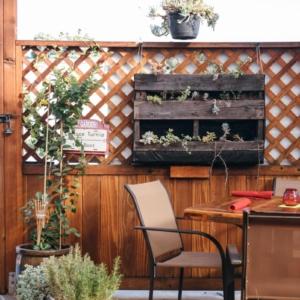 Garden_Kitchen-Olivia_Hayo-1