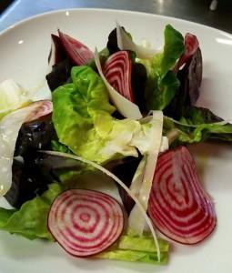 Garden Fresh Salad w/ Chioggia Beet & Parmesan Slices